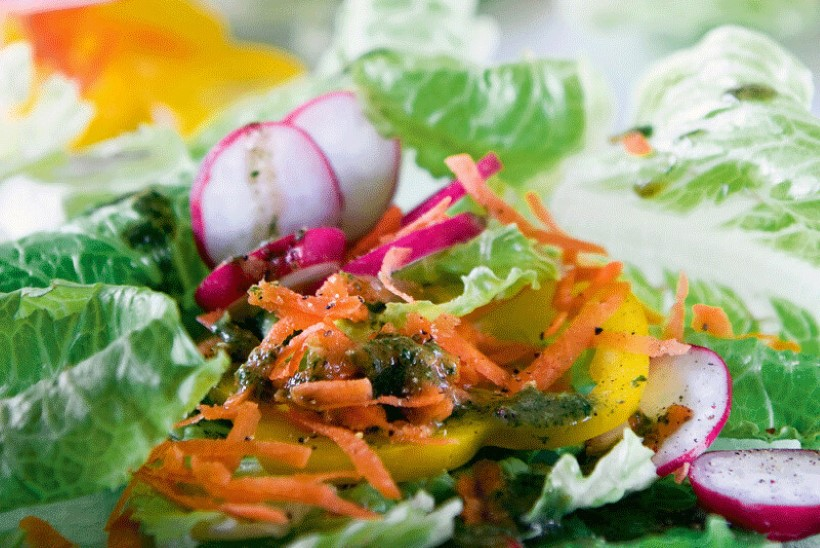 NÄDALAMENÜÜ | 5.–11. juuli: kõhtutäitvad toidud, mis samas on suvehõngulised, kerged ja lihtsad