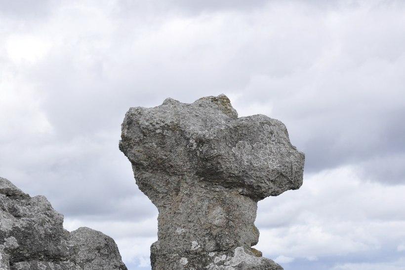 Gotland: paradiisisaar põhjamaal