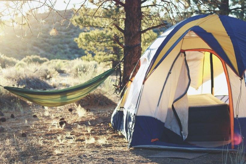 Matkahooaeg on alanud: kuhu võib oma telgi üles panna ja kus teha lõket?