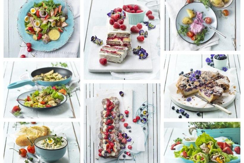 ROAD, MIDA SA TAHAD PALAVAGA SÜÜA   Heeringajäätis, okroška, salatid lõhe ja kanaga, vrapid ning koogid mustikate, maasikate ja kohupiimaga, lisaks jäine vahvlitort