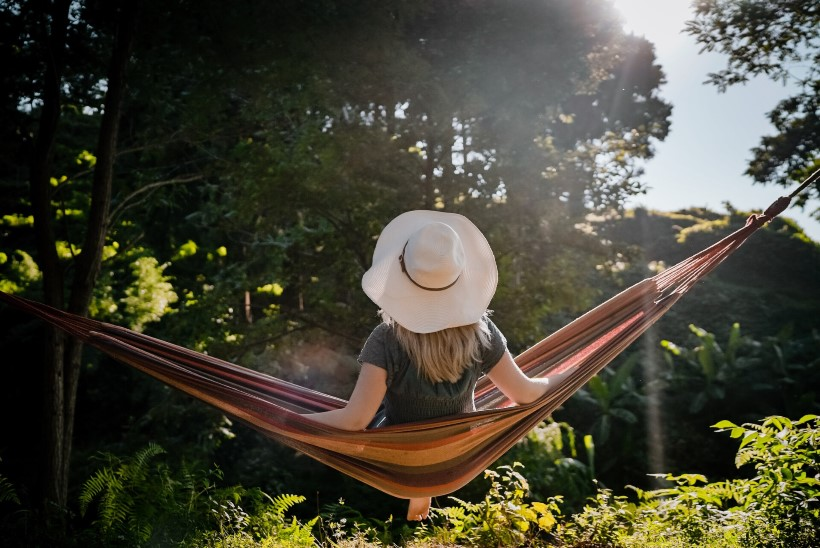 Naistelehe kodunupud: head nõuanded korilasele ja kodusisustajale