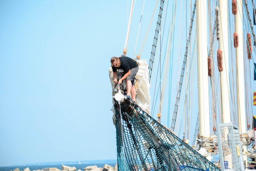 Sail Tallinn alustas: uhked purjelaevad on saabunud Lennusadamasse ja Noblessnerisse