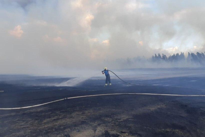 FOTOD   Lavassaare turbatootmisalal on tulekolletes ligikaudu 25 hektarit