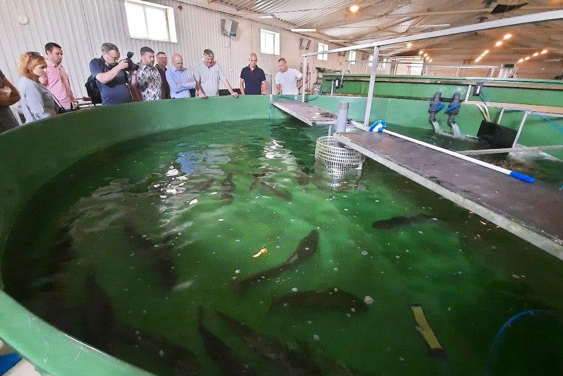 Tublid kalakaitsjad said ministrilt tänukirjad
