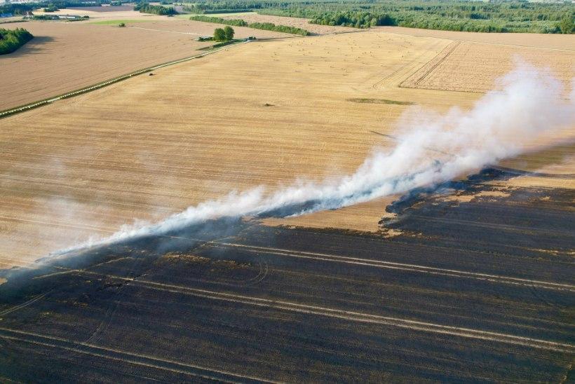 FOTOD | Põltsamaa vallas läks põlema suur viljapõld