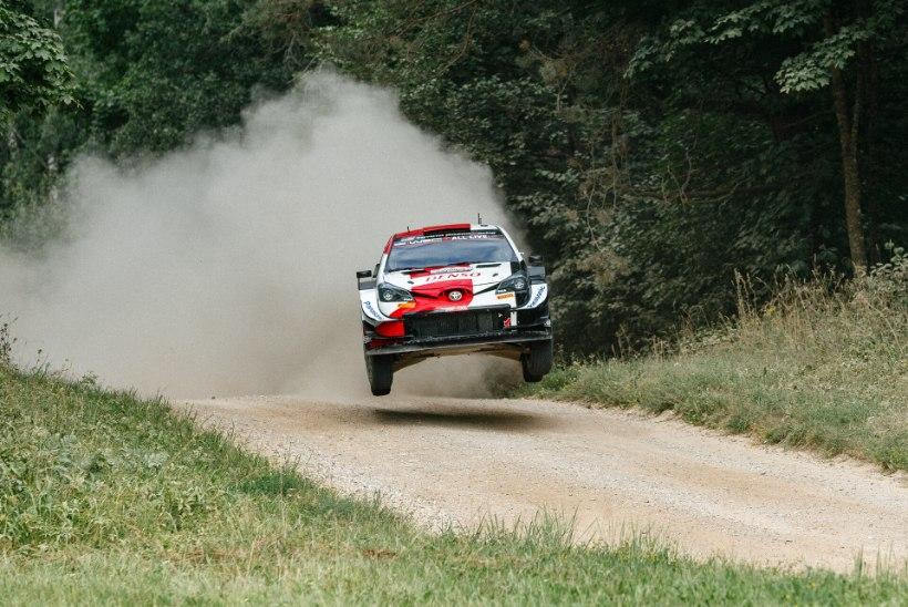 Rallieksperdid kritiseerisid Rally Estonia korraldajaid: milleks neid tehishüppeid vaja on? Nende tõttu on varemgi piloodid vigastada saanud
