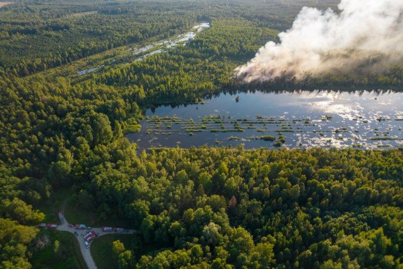 DROONIFOTOD   Viljandimaal põleb mitu hektarit metsa