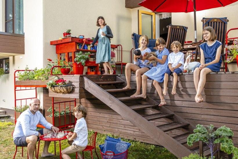 FOTOLUGU | Oh, mis põnevad värvid ja detailid! 5 lapsega koos kasvav maja Kloogal