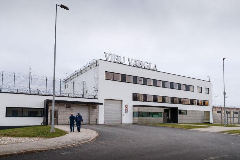 Teenistuskoer ründas vanglas last