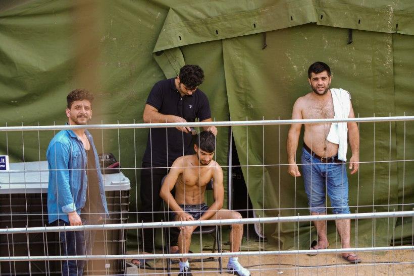 RÄNDEKRIIS LEEDUS: migrantide tulv võib peatuda alles siis, kui mõistetakse, et seda teed pidi Euroopasse ei pääse