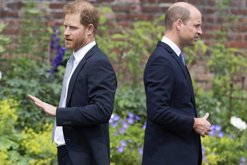Dokfilm: prints Williami alluvad levitasid kõlakaid Harry psüühikaprobleemidest