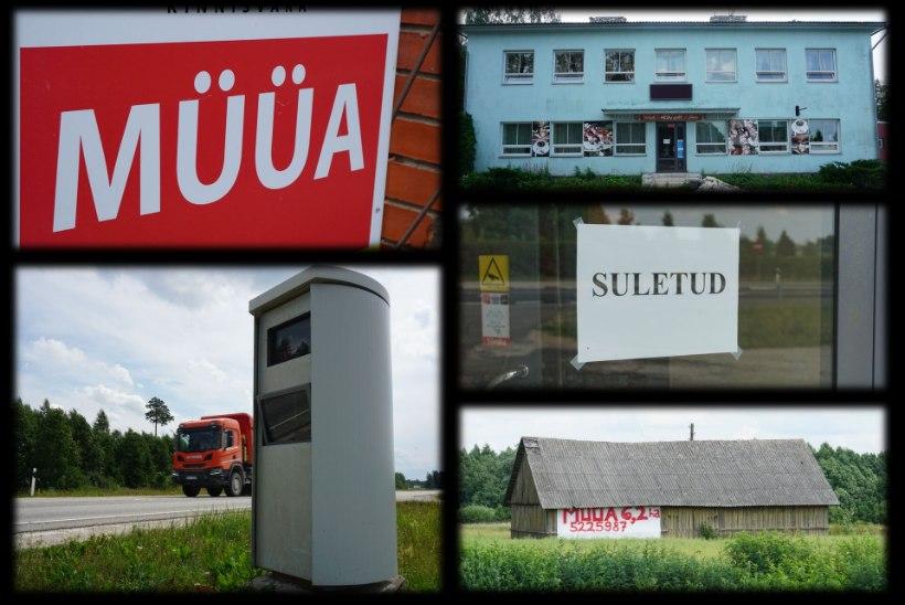 EILSE PÄEVA HALE VARI: Tallinna-Tartu tee vanal lõigul annab elumärke otsida