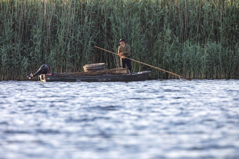 FOTOGRAAFIA   Doonau delta – kalameeste ja linnuhuviliste paradiis