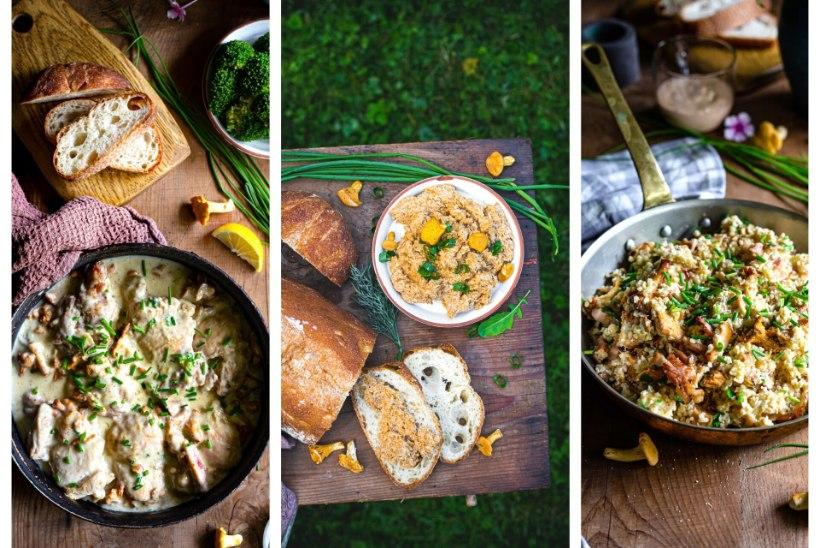 AH, MINGE SEENELE | Maitserohke seenepasteet, seene-bulgurisegadik ja kanahautis seente ja juustukastmega