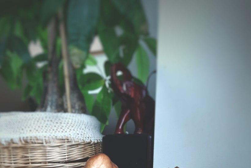 SEENEHOOAEG ON KÄES: kasvata söögiseeni hoopis kodus aknalaual!