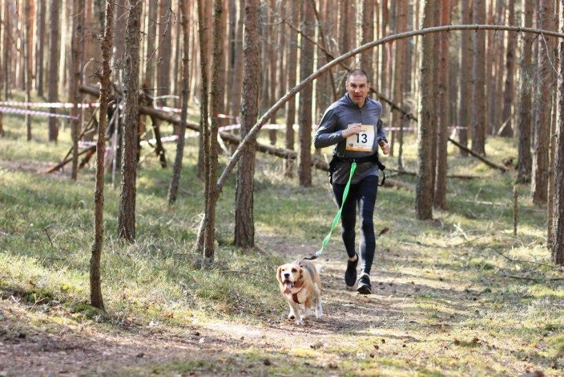 Multitalent Andrus Mölli sporditee verstapostid: 13aastaselt Eesti noorte korvpallikoondises, 25aastaselt Eesti kiireim sprinter, 61aastaselt tubli pikamaajooksja