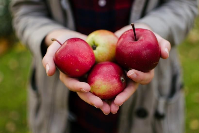 PROOVI   Tee õuntest toormoosi