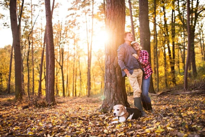 SÜGISE ARMUHOROSKOOP | TÄHED ÕPETAVAD: kuidas armastust sel sügisel ligi meelitada?
