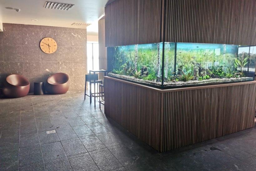 Hiljuti avatud Hestia Hotel Haapsalu Spa – imeline järvevaade, maitsvad toiduelamused ning lõõgastavad hoolitsused