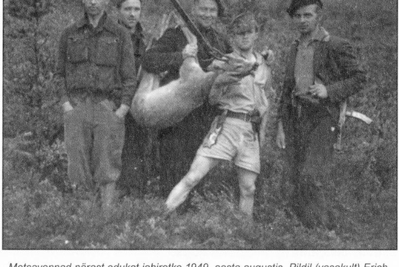 METSAVENDADEST RONGIRÖÖVLID: me olime talumeestele nagu Robin Hoodid