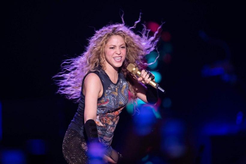 KOLETU LUGU: metssead ründasid Shakirat ja tegid tema kotiga vehkat!