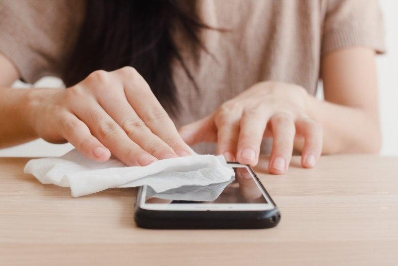 Naistelehe kodunupud: puhasta oma telefon põhjalikult ja heiska vanavanemate päeva puhul lipp