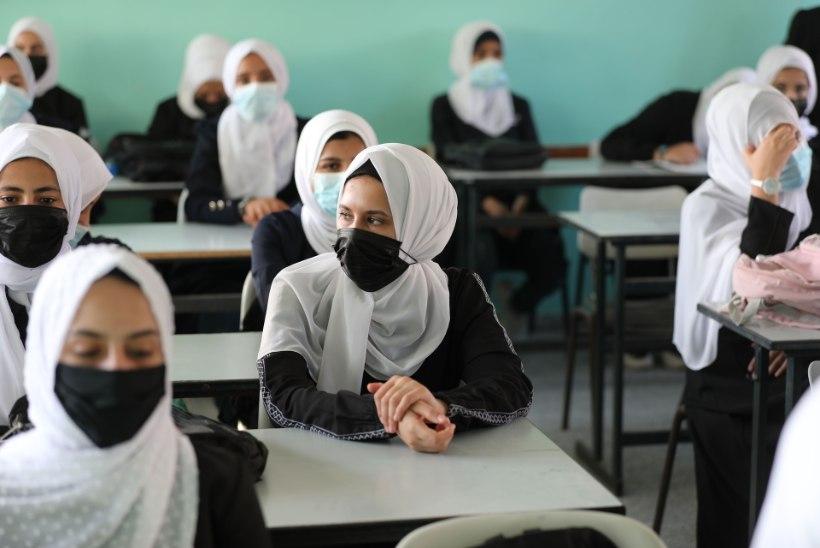 ÜRO: vaid kolmandik pagulaslastest läheb keskkooli