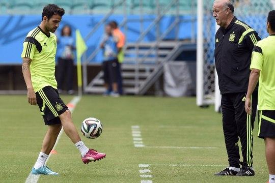 VIDEO: Fabregas saadeti hispaanlaste treeningult minema!