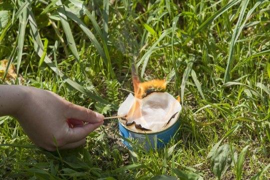 Gurmeelõuna metsas: kuidas tualettpaberiga tuunikala küpsetada?