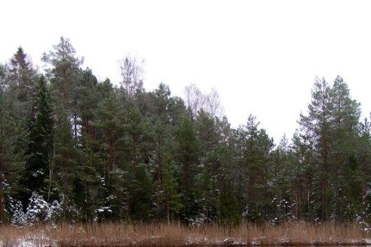 Avasta Eestimaad: kust otsida uppunud tanki?