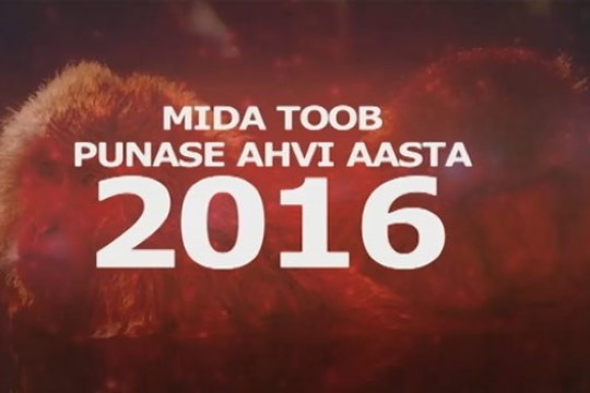 TÄNA ÕHTUL TV3s: punase ahvi aasta on täis rünnakut, kadedust ja võimuvõitlust