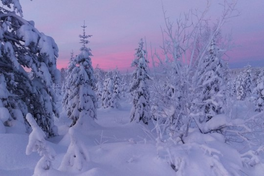 Lapimaa võlub tulijat koheva lume ja suusamägedega