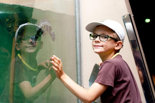 Lastega Helsingis: sõida saarele või mine muuseumi