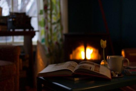 Kasulikud nipid: kuidas hoida küttekolded puhtana?