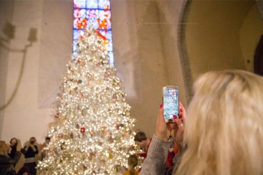 Cмотри, в церкви Нигулисте установили Рождественскую елку