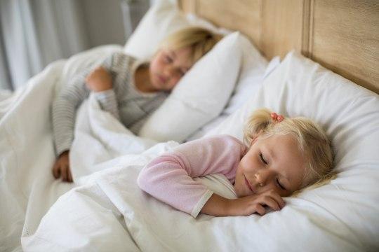 Что делать, чтобы не делить постель с пылевыми клещами?