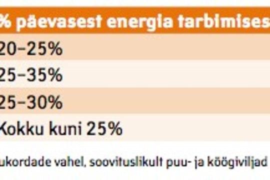 Kuidas jagada ENERGIAT toidukordadele sõltuvalt töörežiimist?