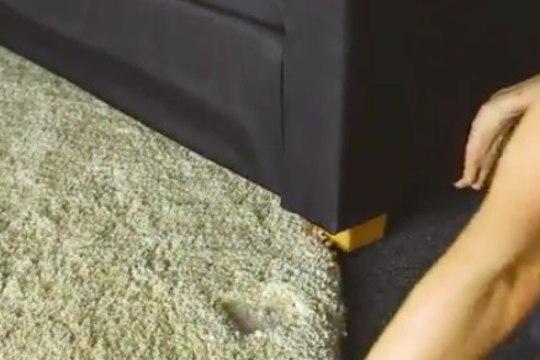 Kuidas vaibast mööblijäljed välja saada?