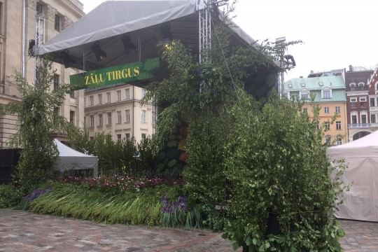 JÄRGMINE PEATUS | Tubased tegevused ja tammepärjad – kui erinev on Läti jaanipäev Eesti omast?