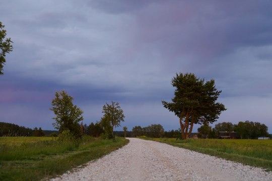 EESTIS LOOTUST POLE: jätkuv külm ja vihm sunnib suvitajad välismaale ning sanatooriumitesse
