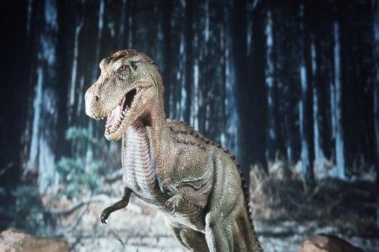 Türannosaurus jooksis aeglasemalt kui inimene