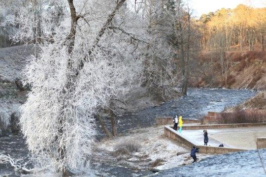 Смотри, какая красивая зимняя погода пришла в Эстонию