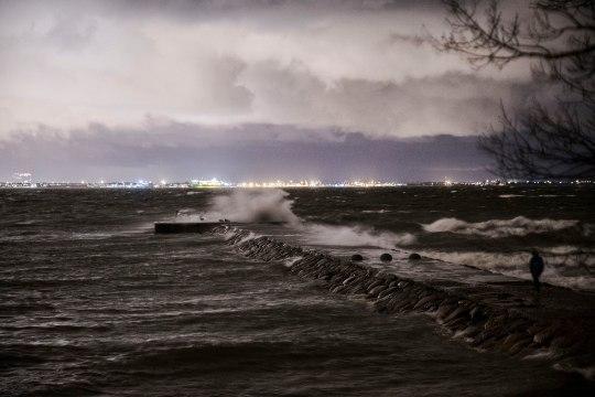 Фото и видео: снежный шторм вызвал хаос в Эстонии