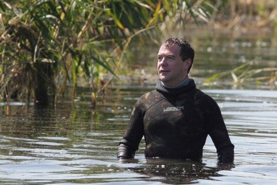 Медведев обязал жителей России косить траву