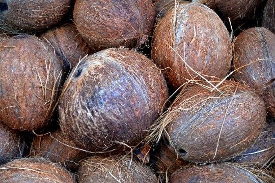 Mees, kes hullas kookospähkliga ja veel 7 jaburat seksilugu aastast 2017