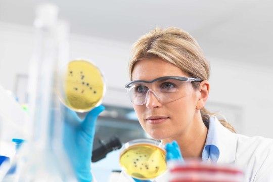 Superbakterid tapavad Euroopas igal aastal 33 000 inimest