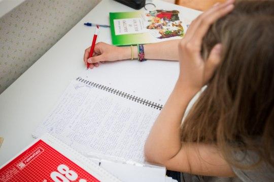 Ettepanek laste kodutööd kaotada ei vaimusta õpetajaid ega lapsevanemaid