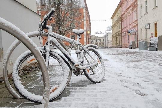Tartu rattaringluse loomiseks saadi inspiratsiooni Kopenhaagenist ja Pariisist