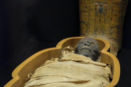 Покупатель дома нашел на диване сидячую мумию бывшего владельца