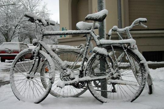 Lumega ratta selga – kas hulljulgus?
